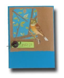 birdie11